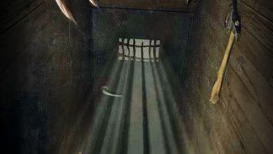 Photo of Horror na Roztoczu – Aktualności na 31.07.2014